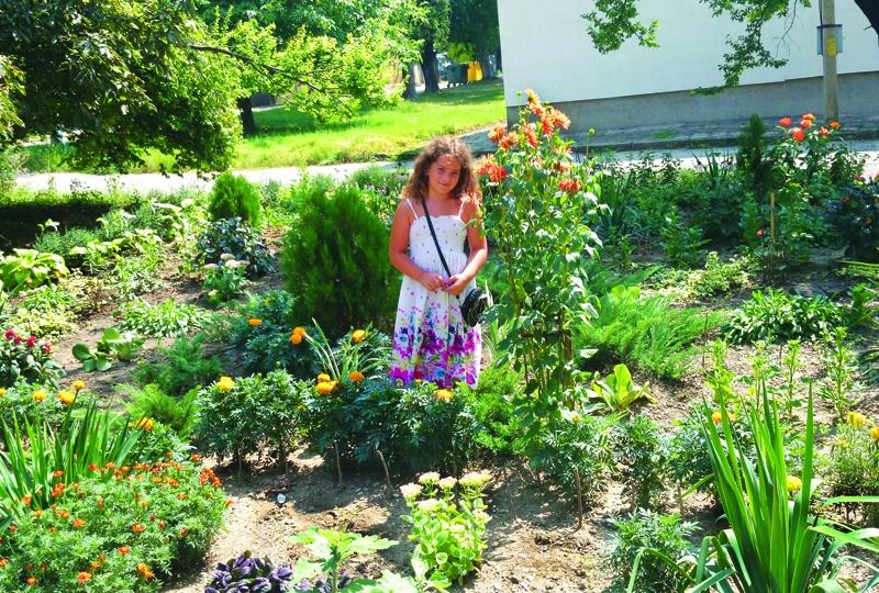IНай-красивата градина в Павликени е на ул.Шейново